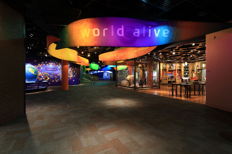 Discovery Place - World Alive